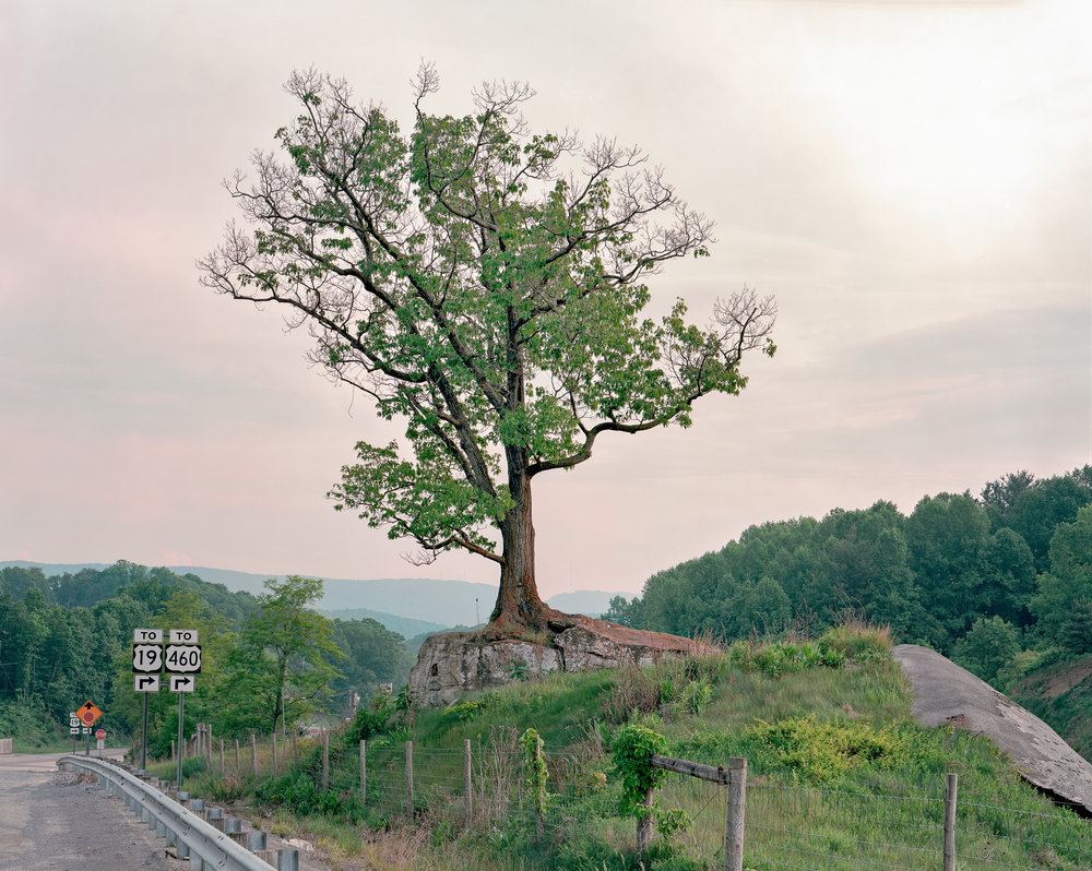 Highway Arbor, near Bluefield, West Virginia  is only display at Usagi Gallery