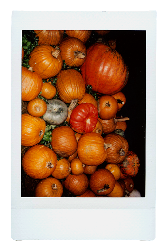 Instax-Stack_0007_Layer-37.png