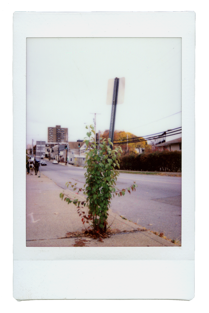 Instax_Stack_2_0003_Layer-28.png