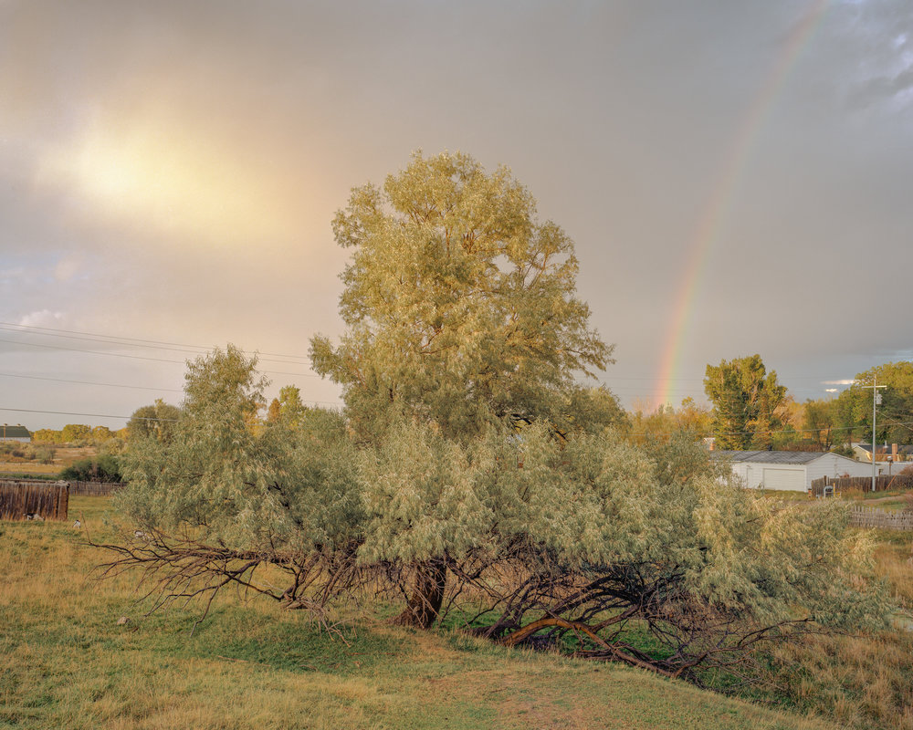 Clearing Storm, Saratoga, Wyoming