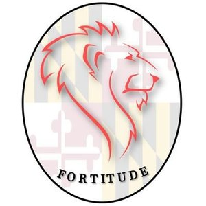 The Rise and Fall of Fortitude FC — Protagonist Soccer