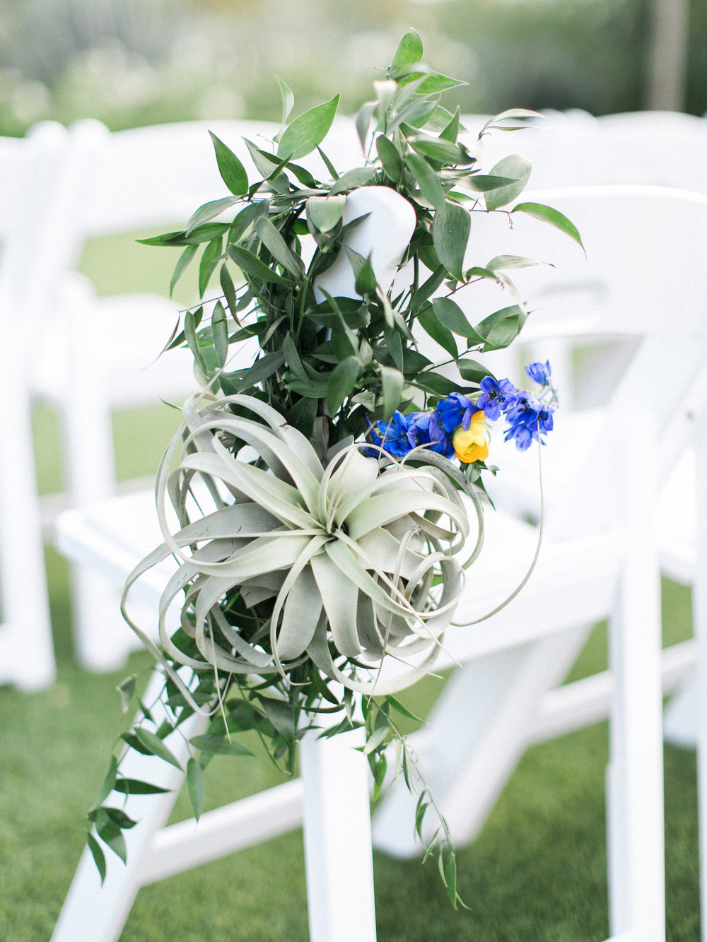 Fiesta Inspired El Chorro Wedding - Air Plant Chair Hanger