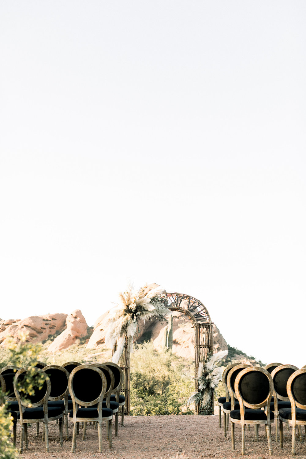 Black and Blush Fine Art Desert Wedding - Pampas Grass Arch
