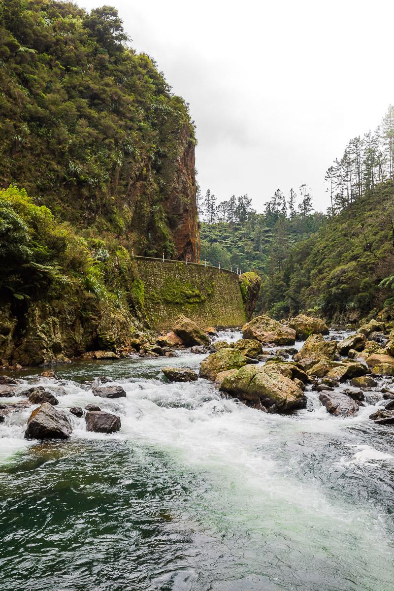 road-karangahake-gorge-auckland-coromandel-river-travel-tourism-new-zealand.jpg