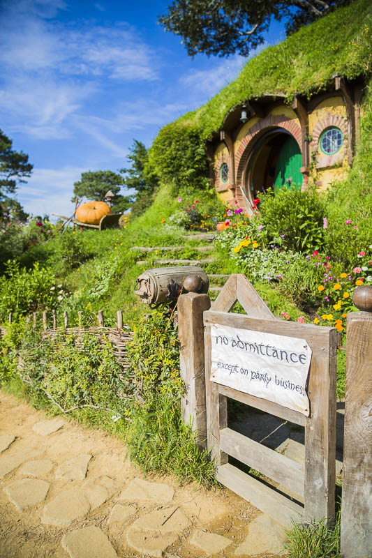 hobbiton-tour-new-zealand-two-dusty-lenses-5-common-mistakes-photographers-travelling-travel.jpg