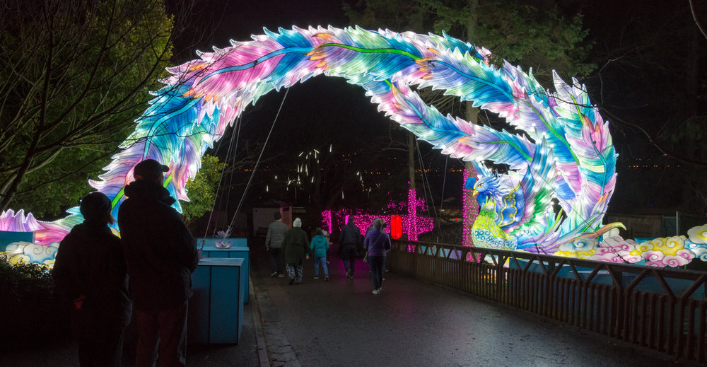 The Giant Lanterns of China, Edinburgh Zoo, December 2018