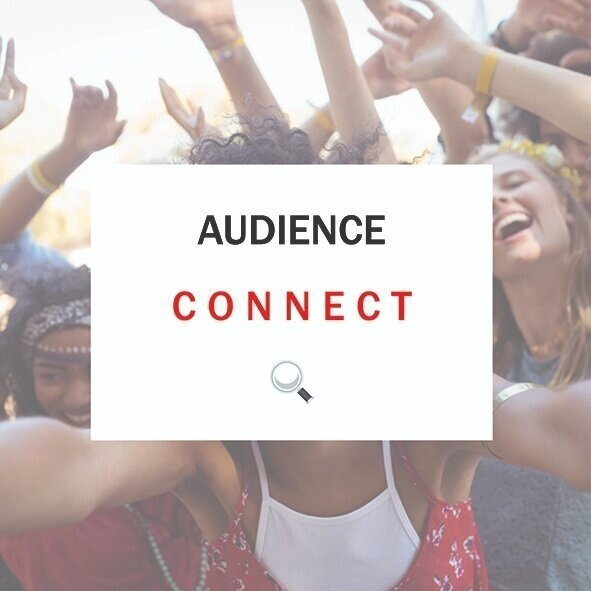 AUDIENCE CONNECT.jpg