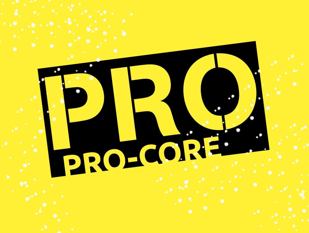 Pro logo 2.jpg