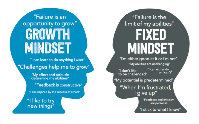 The difference between a growth mindset and a fixed mindset.