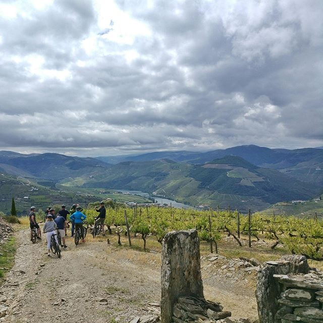 Country biking across the vineyards of our UNESCO World Heritage Site: Douro River!⠀ Are you ready to try it? 🚴⠀ .⠀ .⠀ .⠀ .⠀ #thehouseofevents #discoveringportugal #visitportugal #incentive #meeting #bbtcountrybike #douroriver #vineyards #eventorganizer #eventmanager #cantskipportugal