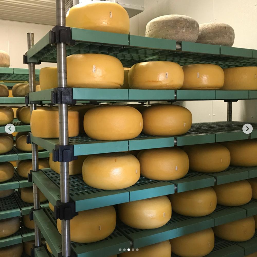 Hidden Hills Dairy's Old Gold Aged Gouda