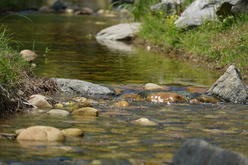 Canva - The Creek, Park, Outdoor, Water, Watercourse (2).jpg