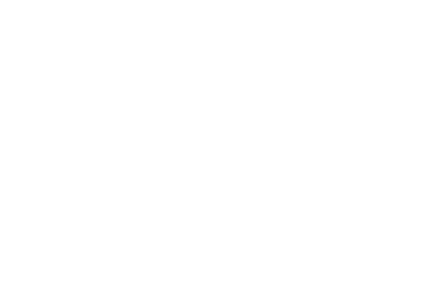 accionrepublicana