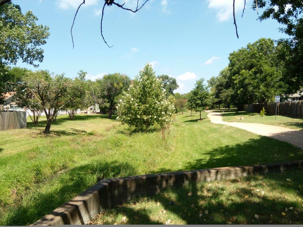 tree far away.jpg