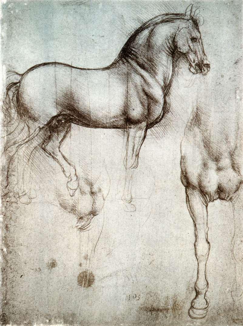 Étude d'un cheval par Léonard de Vinci. Vers 1490.  Des chevaux au galop… C'est la sensation que me font les idées non bridées dans ma tête !