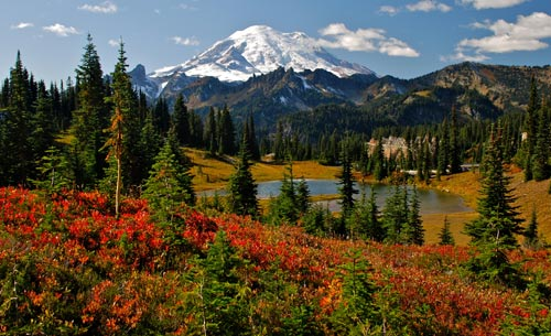 parks_Mount-Rainier.jpg