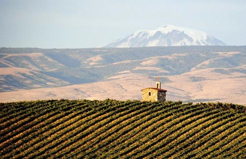 wine_yakima.jpg