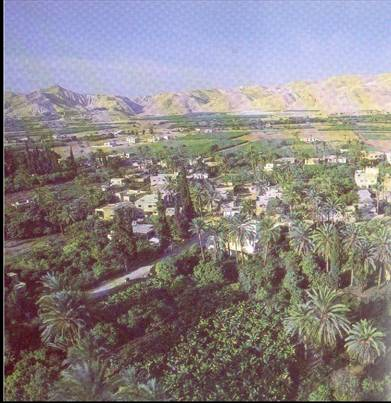 A picture of Jericho with the Mountains in the background that the spies hid in until the coast was clear