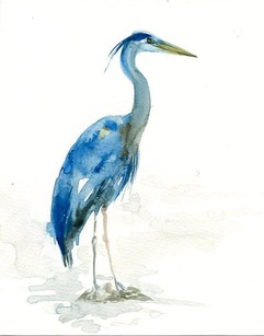 Our original, watercolor Blue Heron logo was created by artist,  Irene Diamente.