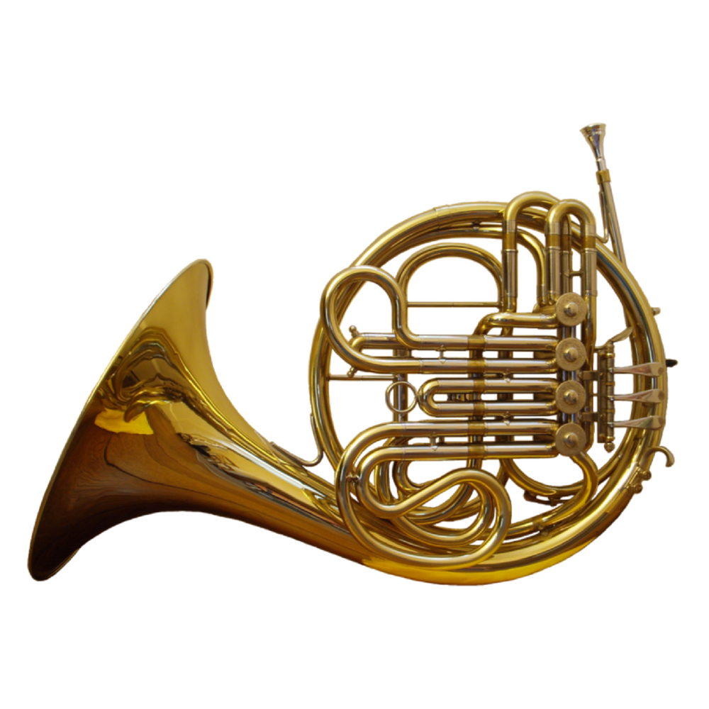 DOUBLE FRENCH HORN - 10 MTH RENTAL $529.03