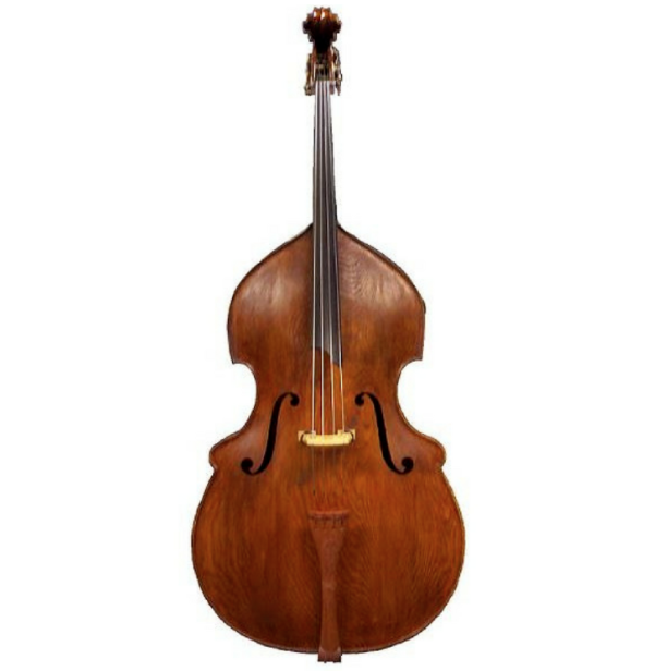 STRING BASS 1/2 - 10 MTH RENTAL $347.34
