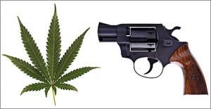 marijuana gun rights - san pedro criminal law attorney don hammond