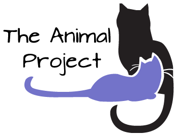 The Animal Project NYC