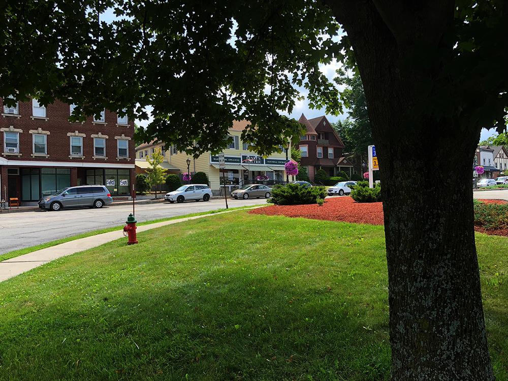 lee town- under tree_IMG_5591_small.jpg