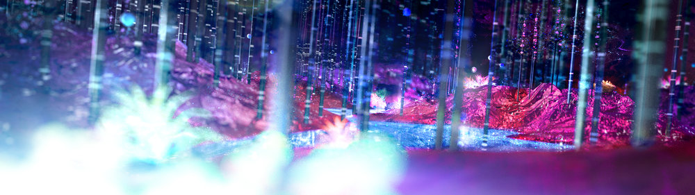 Luminescent_Forest_Design02.jpg