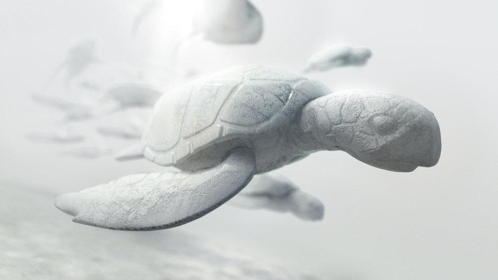 NatureConservancy_Turtle_Design02.jpg