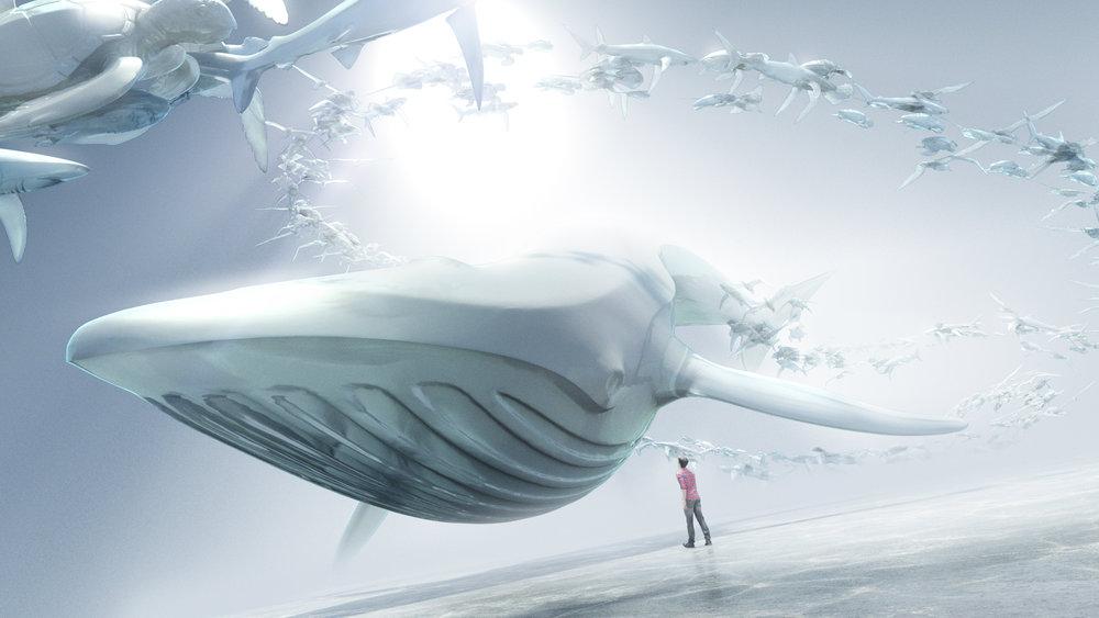NatureConservancy_Whale_Design02.jpg