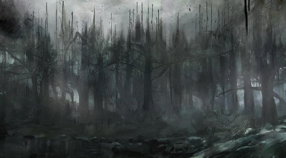 SH06_Forest_02.jpg
