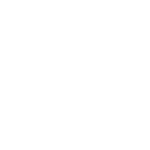 Shining Minds Project