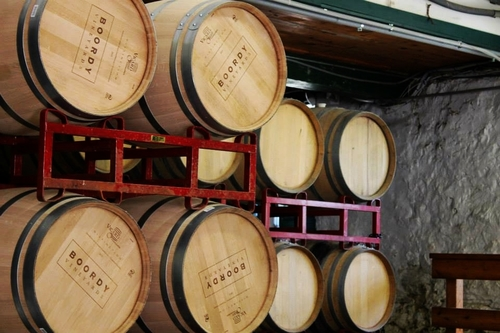 BOORDY WINERY TOUR - MD APA hosted a tour and information discussion about wineries in rural Baltimore. We hosted this event at Boordy Vineyards on Friday October 18th, 2013.