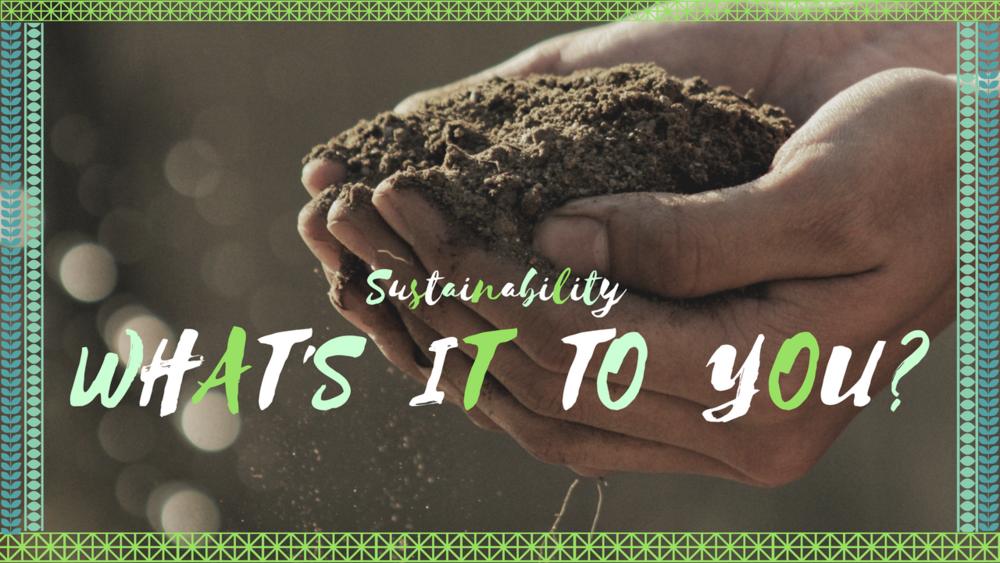 riley sustainability environment