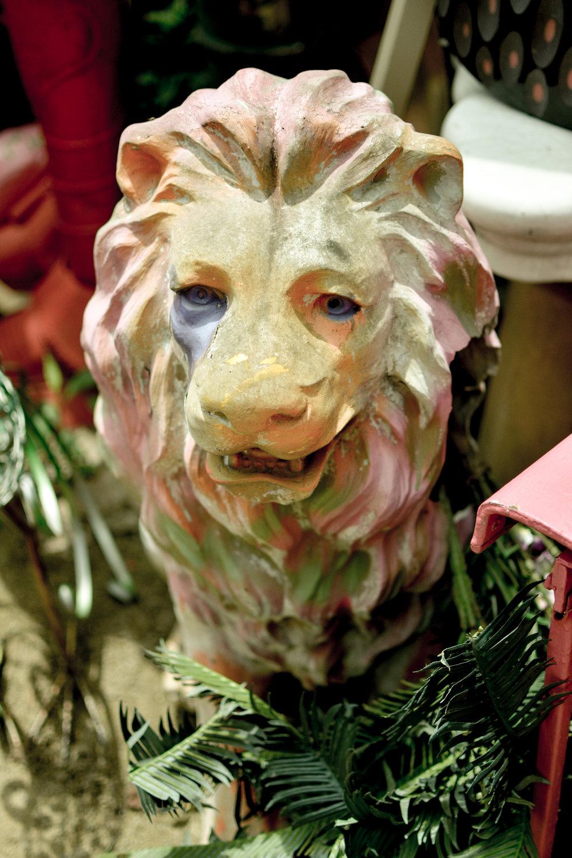 Lion at Randyland