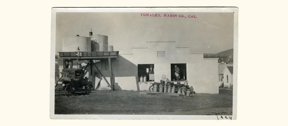 New Sonoma Creamery, Tomales (1924)