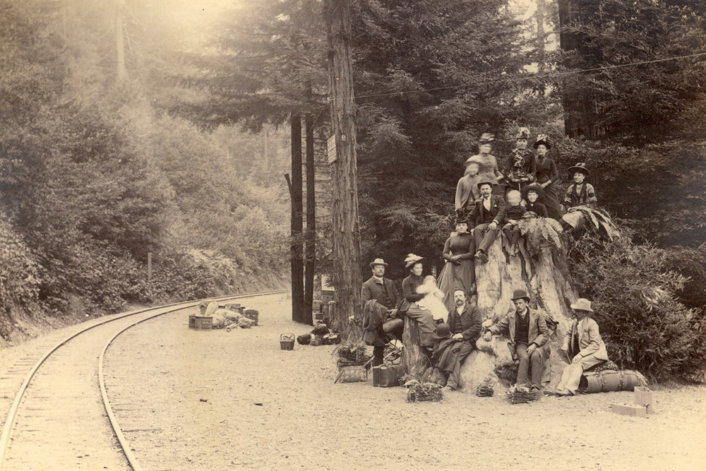 Picnickers waiting for train pose near Lagunitas Creek on and around a tree stump, circa early 20th century.