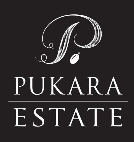 Pukara-500x495-469x495.jpg