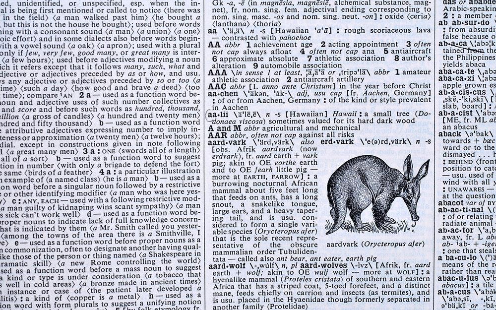 original dictionary source page