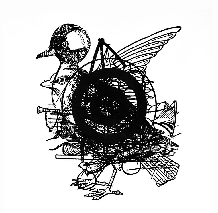 B Sides: bird, bola, bufflehead, bullseye, bugle