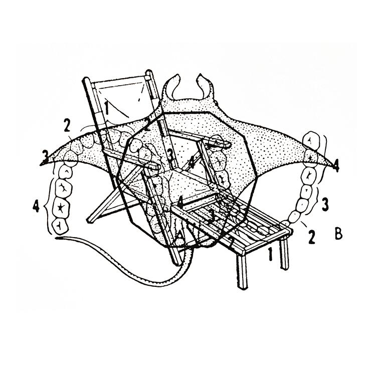 B Sides: decagon, deck chair, dentition, devilfish