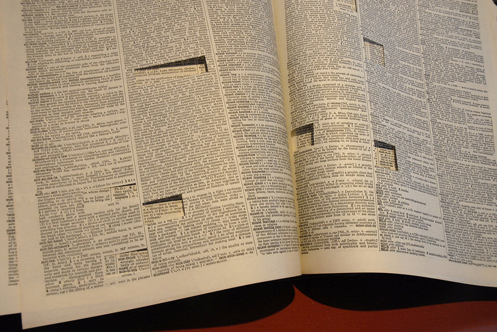 detail of dictionary