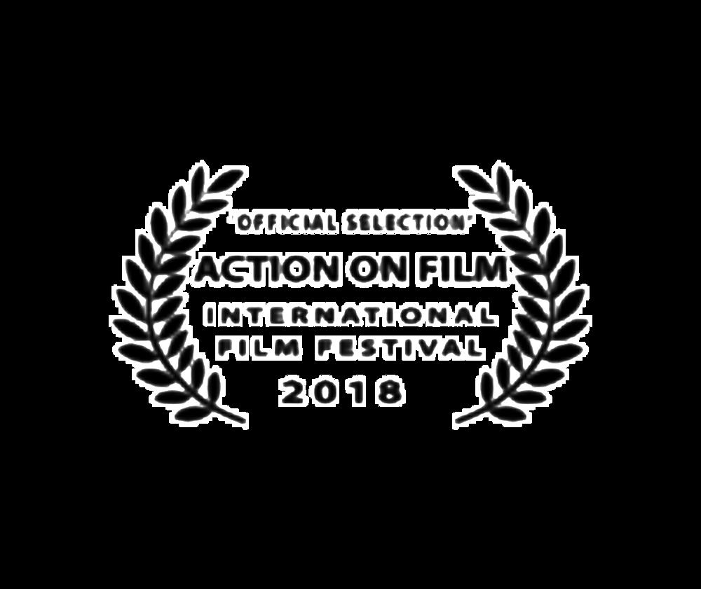 05-actiononfilm.png