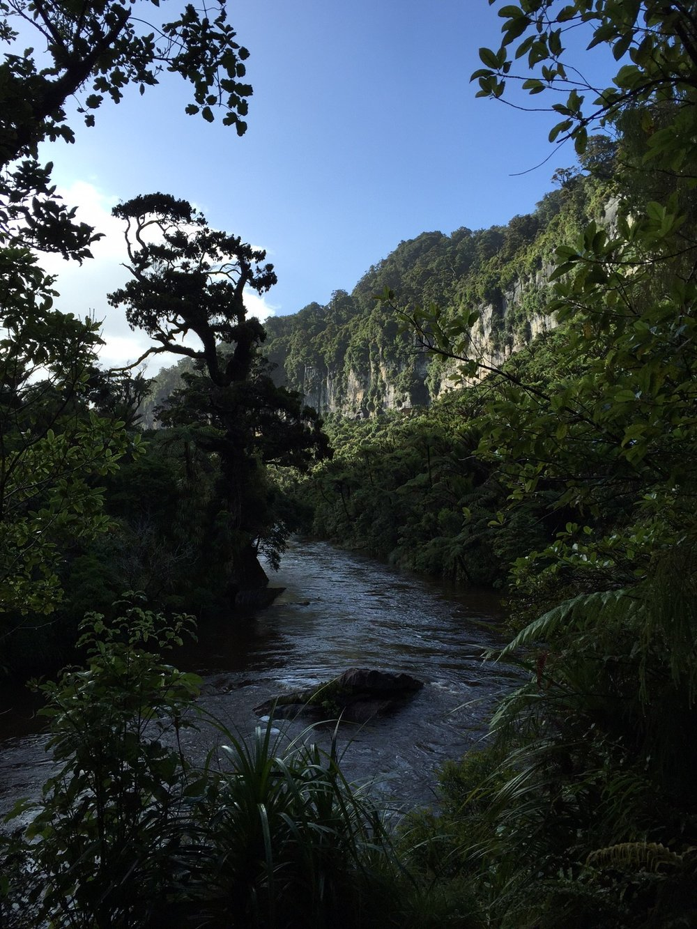 NZpunakaiki-e1426500365942.jpg