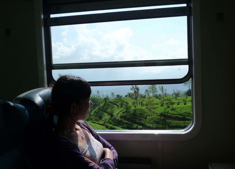 train3-1024x738.jpg