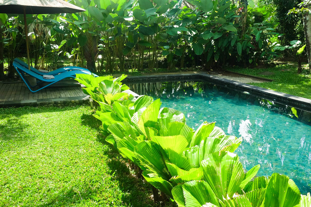 our saltwater pool for the use of our 3 villas