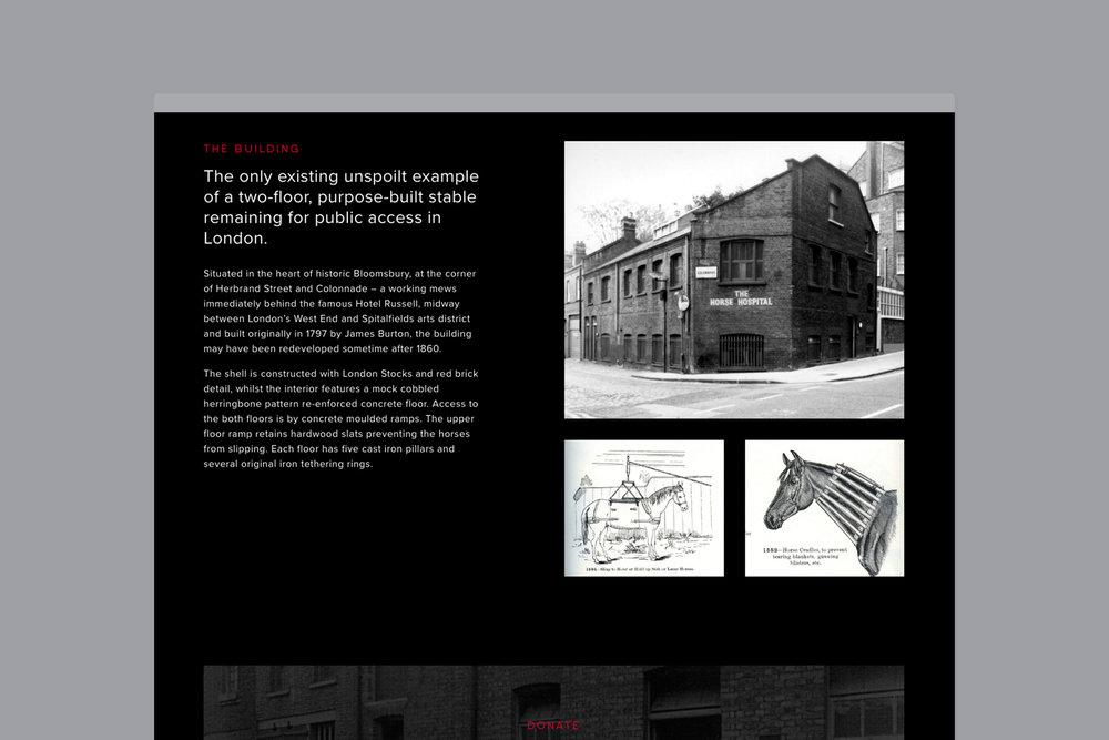 Horse-Hospital-Canvas5.jpg