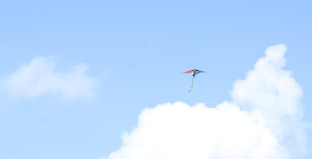 kite2 (1 of 1).jpg
