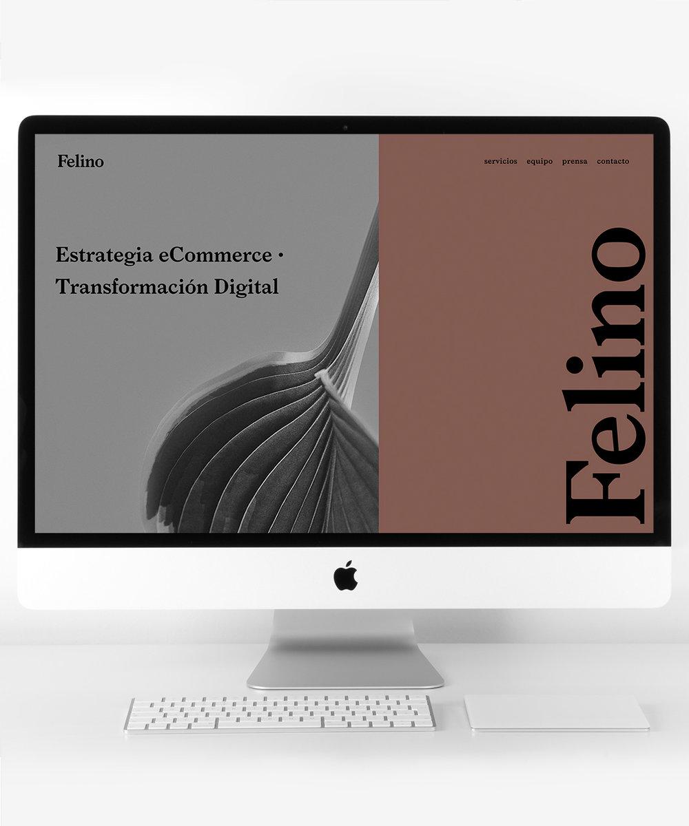 Diseño de Web Corporativa -